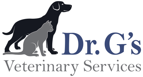 Blog Dr G S Veterinary Services